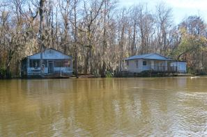 Houses you can only get to by boat. We saw a lot of these on the Honey Island Swamp Tour in Slidell.